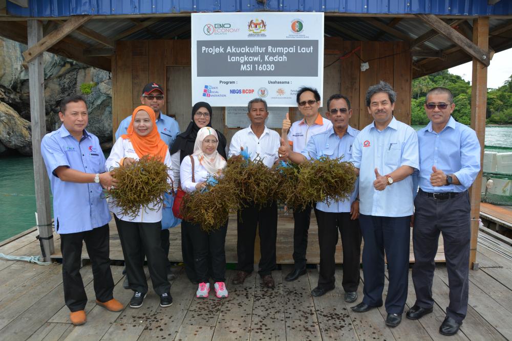 Seaweed-Aquaculture-Project
